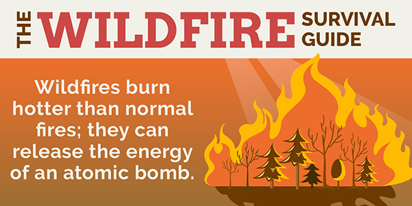 Wildfire Survival Guide 2